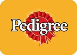 Pedrigee Coupons